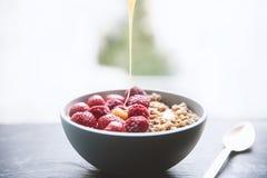 Cuvette organique de protéine de granola photo libre de droits