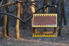 Cuvette pour des oiseaux sur un arbre Photographie stock