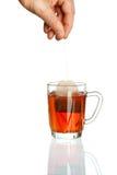 Cuvette transparente de thé Photo libre de droits