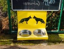 Cuvettes de chien Images libres de droits