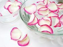 Cuvettes de station thermale avec les pétales roses Image libre de droits