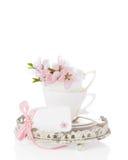 Cuvettes et soucoupes de fleur Photographie stock libre de droits