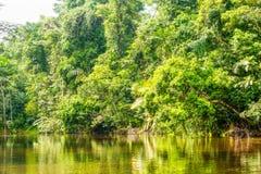 Cuyabeno Ecuador River Stock Photo