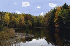 cuyahoga国家俄亥俄公园池塘森林的美国谷 库存照片