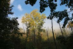 Cuyahoga Dolinny park narodowy w spadku ranku słońcu OHIO - BRECKSVILLE - zdjęcia royalty free