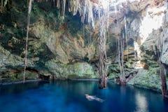Cuzama cenote, Yucatan, Mexico stock photography