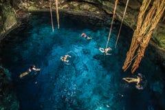Cuzama Cenotes, Iucatão, México fotos de stock royalty free