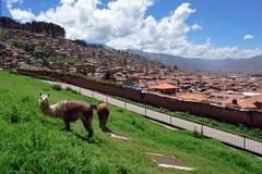 Cuzco city panorama Royalty Free Stock Photography