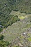 cuzcomachuperu picchu Fotografering för Bildbyråer