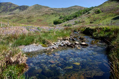 Cwm Pennant stream Stock Images