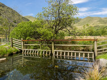 Cwm Pennant stream and bridge Royalty Free Stock Images