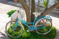 Cyan велосипед отдыхая на дереве и трава горизонтальная стоковое изображение