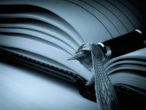 Cyan-blaues Tagebuch Lizenzfreie Stockfotos