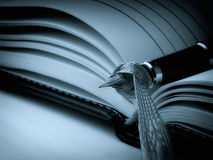 Cyan diary. Closeup of fountain pen on a open diary book. Cyan toned image royalty free stock photos