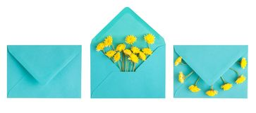 Cyan envelope and yellow chrysanthemum. Isolated on white. Top view. Flat lay royalty free stock photography