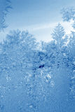 cyan frost arkivbild