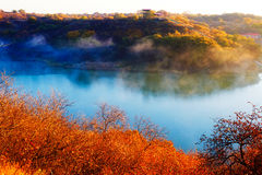 The cyan lake and autumn trees Stock Images