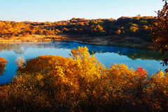 The cyan lake and autumn trees Stock Photography