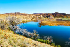 The cyan lake water of Hama dam Stock Images