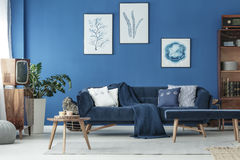 Cyan living room stock photo