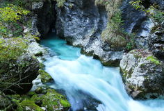 Cyan river in autumn Royalty Free Stock Photos