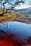 Cyanidemeer in Geamana Roemenië Royalty-vrije Stock Afbeeldingen