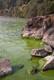 Cyanobacteria in Taihu lake. Serious pollution in China's Taihu Lake Cyanobacteria royalty free stock photos