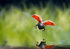Cyber bug Stock Images