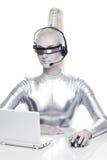 cyber jej laptopu kobiety działanie Zdjęcie Stock