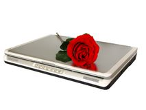 Cyber Love. Red rose on top of laptop Royalty Free Stock Images