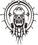 Cyber Skull. Royalty Free Stock Image