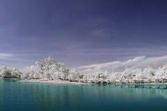 Cyberjaya brzeg jeziora Zdjęcia Royalty Free