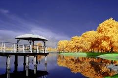 Cyberjaya Lakeside. In infrared looks stock image