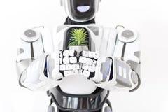 Cyborg που κρατά τις μικρές πράσινες εγκαταστάσεις Στοκ Εικόνες