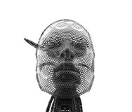 Cyborgirl Стоковая Фотография