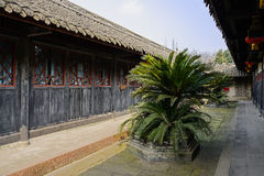 Cycads between aged Chinese buildings in sunny spring Royalty Free Stock Photos