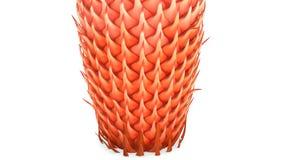 Cycas mannelijke kegel Stock Foto