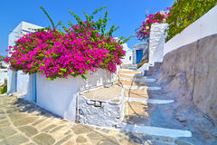 cycladic architecture at Apollonia Sifnos Greece stock images