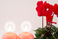 Cyclamen and candle Royalty Free Stock Photos