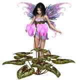 Cyclamen Fairy Standing by Pink Flowers. Fantasy illustration of a pretty dark haired fairy standing with a pink cyclamen flower, 3d digitally rendered stock illustration