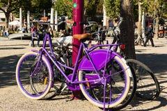 Cycle Amsterdam Stock Photos