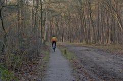 Cycle dans la forêt Photo stock