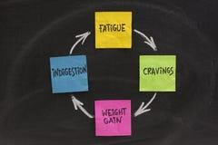 Cycle de gain de poids Image stock