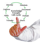 Cycle de vie de transfert de la connaissance images stock
