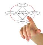 Cycle de vie des produits Image libre de droits