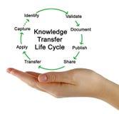 Cycle de vie de transfert de la connaissance photos libres de droits