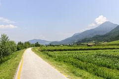 Cycle lane of the Adige valley royalty free stock photos
