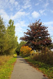 Cycle path in autumn Stock Photography