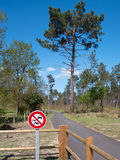 Cycle Path, Landes, France 3 Royalty Free Stock Photo