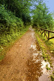 Cycle path of Olona river & x28;Italy& x29; Stock Photo